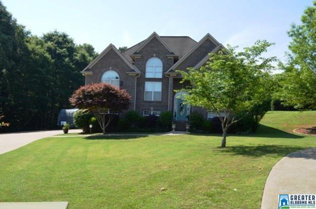 125 Peaceful Ln, Lincoln, AL 35160 (MLS #849946) :: Brik Realty