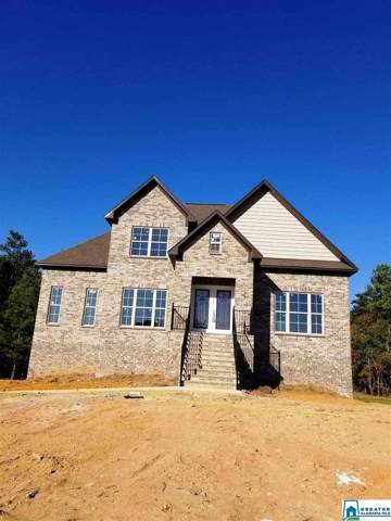 9010 Brookhaven Ln, Odenville, AL 35120 (MLS #850290) :: Gusty Gulas Group
