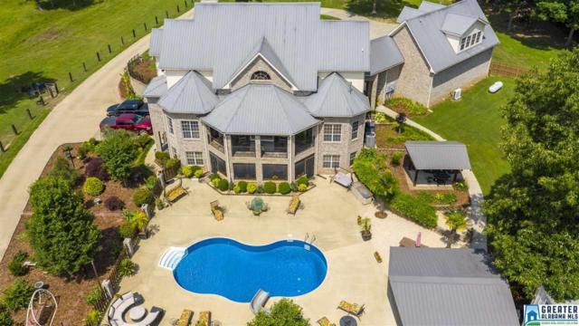 1720 Alston Farm Rd, Columbiana, AL 35051 (MLS #850775) :: Brik Realty
