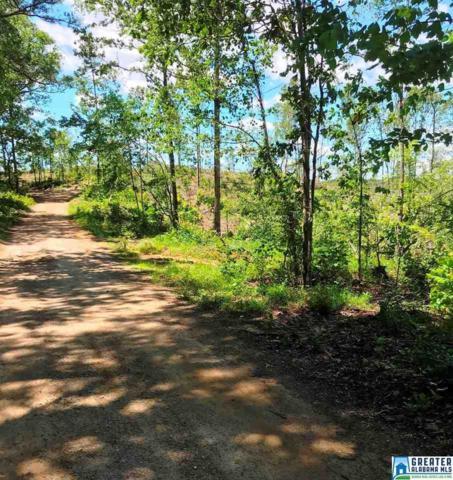 47.3 acres Co Rd 214 47.37 Acres, Fruithurst, AL 36262 (MLS #853338) :: Josh Vernon Group