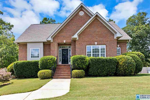 352 Pats Way, Springville, AL 35146 (MLS #855035) :: Gusty Gulas Group