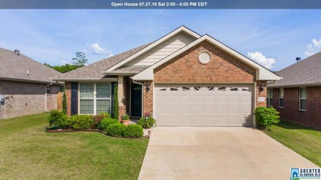 835 Clover Ave, Odenville, AL 35120 (MLS #855454) :: Brik Realty
