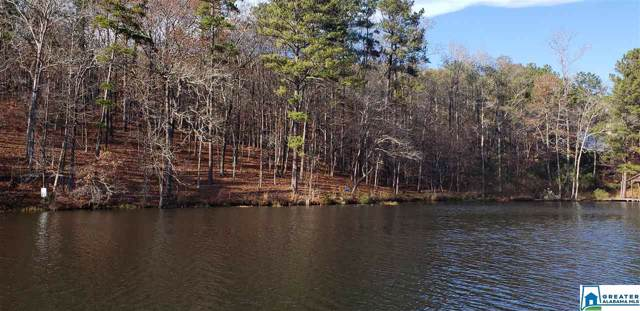 Lot 5 Big Y Cove Loop #5, Rockford, AL 35136 (MLS #855738) :: LIST Birmingham
