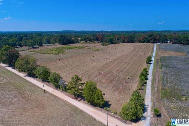 Jackson Farm Rd #1, Wilsonville, AL 35186 (MLS #862435) :: Josh Vernon Group