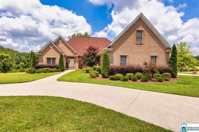 10101 Hwy 411, Odenville, AL 35120 (MLS #864374) :: Bentley Drozdowicz Group