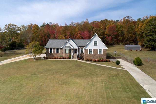 1818 Grandview Trl, Warrior, AL 35180 (MLS #867286) :: Bentley Drozdowicz Group