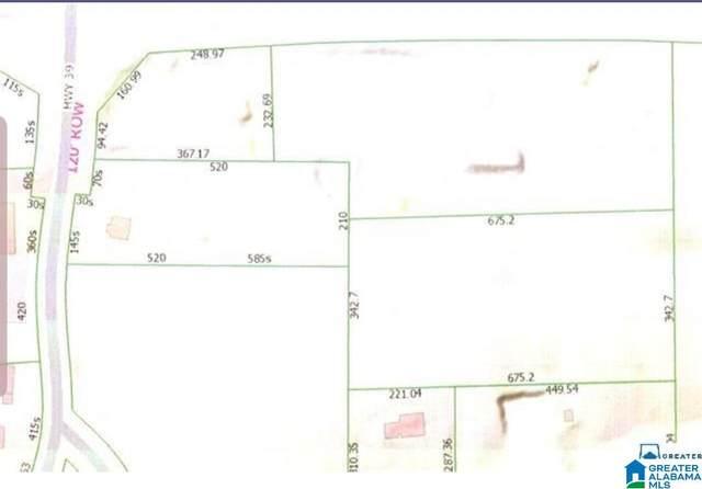 `101 County Road 39, Chelsea, AL 35043 (MLS #868557) :: JWRE Powered by JPAR Coast & County