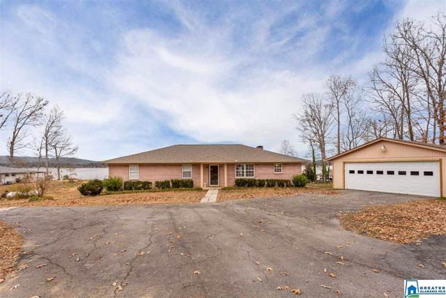 249 Riverview Dr, Ashville, AL 35953 (MLS #868572) :: Josh Vernon Group