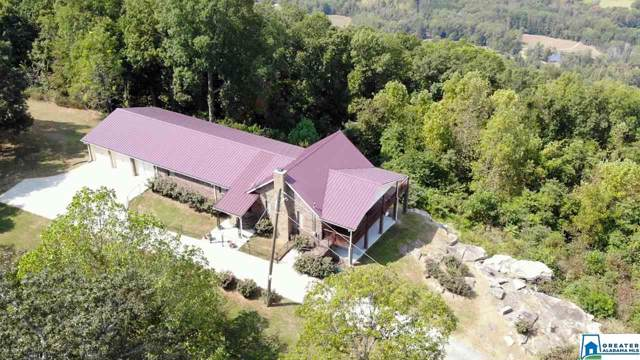 1458 Warnock Peak Rd, Hayden, AL 35079 (MLS #870264) :: LocAL Realty