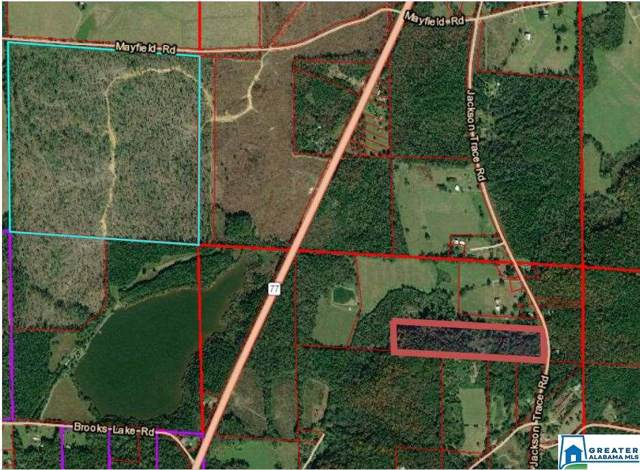 16091 Jackson Trace Rd #0, Lincoln, AL 35096 (MLS #871549) :: LocAL Realty