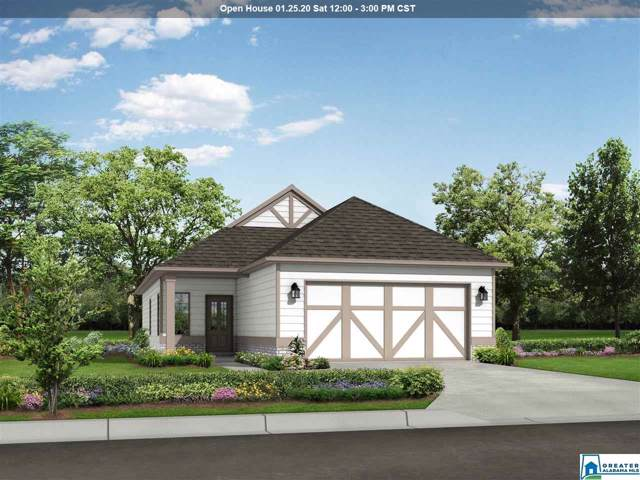 605 Briar Ridge Cir, Odenville, AL 35120 (MLS #872013) :: Josh Vernon Group