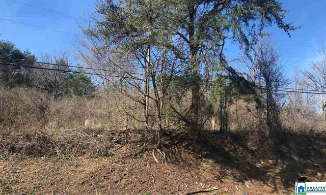 6274 New Castle Rd 19 Acres, Morris, AL 35116 (MLS #874652) :: Gusty Gulas Group