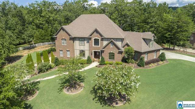 1200 Legacy Dr, Hoover, AL 35242 (MLS #875540) :: Josh Vernon Group
