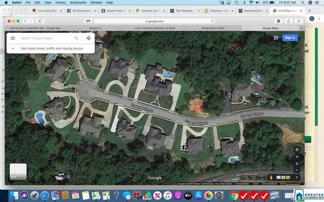 1519 Crown Point Dr #215, Gardendale, AL 35117 (MLS #878157) :: Josh Vernon Group