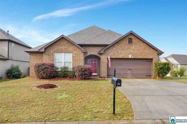 397 Blackberry Blvd, Springville, AL 35146 (MLS #878276) :: Josh Vernon Group