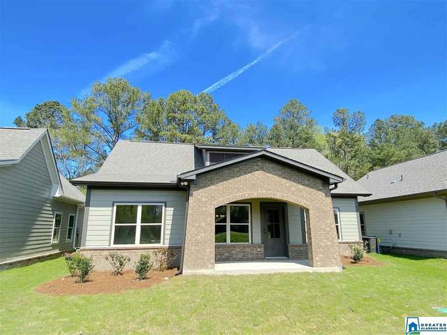 151 Trotter  Ct, Morris, AL 35116 (MLS #879298) :: Bentley Drozdowicz Group