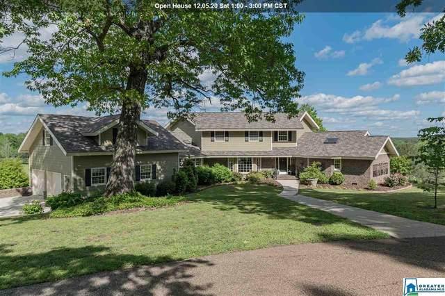 4 Brush Creek Farms, Columbiana, AL 35051 (MLS #881936) :: Sargent McDonald Team