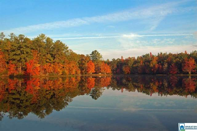 471 Lakewood Ln, Columbiana, AL 35051 (MLS #883124) :: LocAL Realty