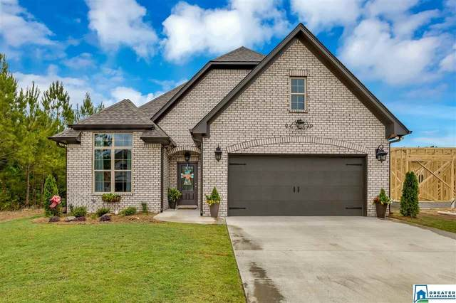 475 Sterling Pl, Odenville, AL 35120 (MLS #883954) :: Josh Vernon Group