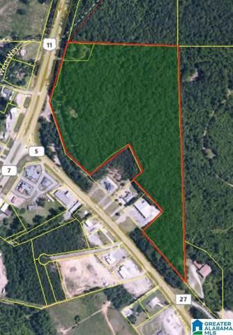 Highway 11 #0, Woodstock, AL 35188 (MLS #884359) :: Howard Whatley