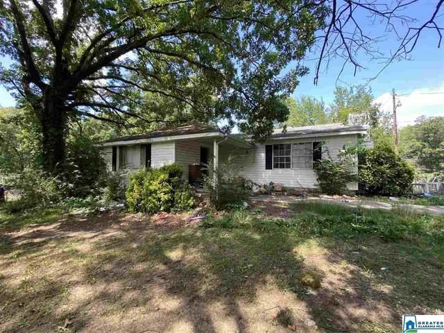 6064 Castle Heights Rd, Morris, AL 35116 (MLS #886024) :: Howard Whatley