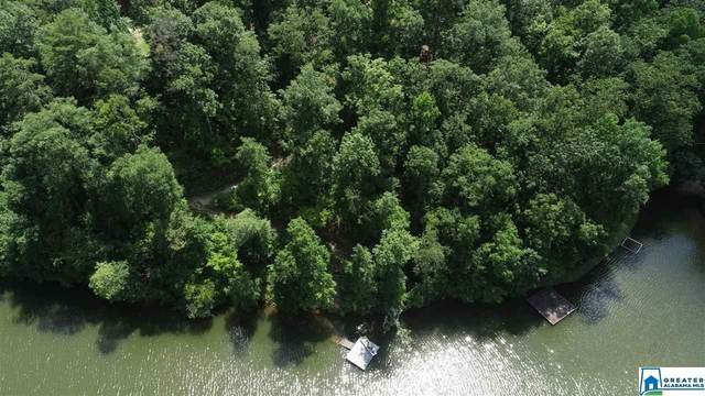 Lot 5 Co Rd 2642 #5, Wedowee, AL 36278 (MLS #886527) :: LocAL Realty