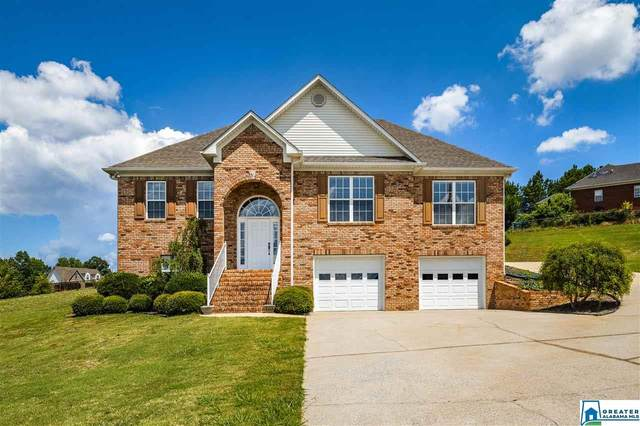 203 Greystone Dr, Oneonta, AL 35121 (MLS #886605) :: Bentley Drozdowicz Group