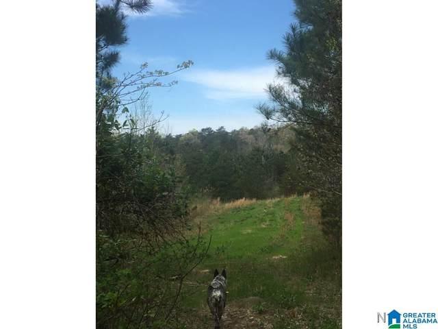 0 Bear Creek Road #0, Haleyville, AL 35565 (MLS #886658) :: Lux Home Group