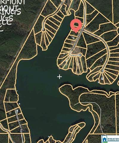 Lot-34 Paint Creek Overlook Lot-34 - Lake L, Sylacauga, AL 35151 (MLS #887098) :: Bentley Drozdowicz Group