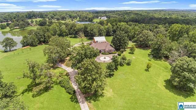 980 Hwy 438, Wilsonville, AL 35186 (MLS #888777) :: Bailey Real Estate Group