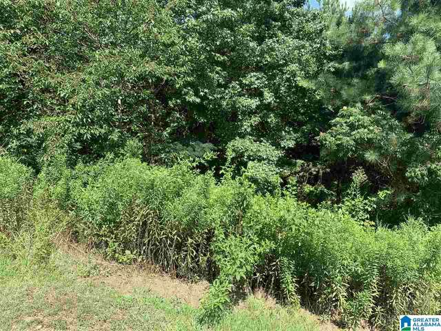 0 Hayfield Dr 9 & 10, Dora, AL 35062 (MLS #889646) :: LocAL Realty