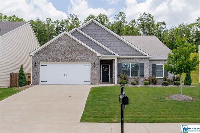 1104 Aronimink Dr, Calera, AL 35040 (MLS #890720) :: Bentley Drozdowicz Group