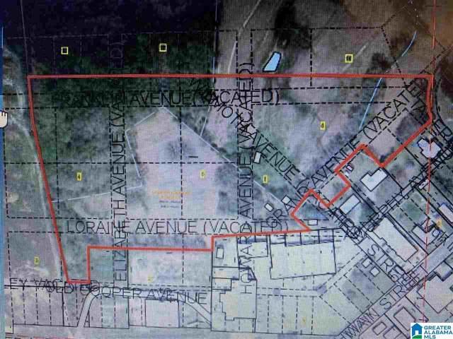 0 Tabernacle Rd #14.6, Brent, AL 35034 (MLS #890860) :: LocAL Realty