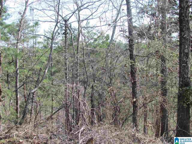 0000 Cogswell Avenue Vacant 61+- Acr, Pell City, AL 35125 (MLS #891318) :: LocAL Realty