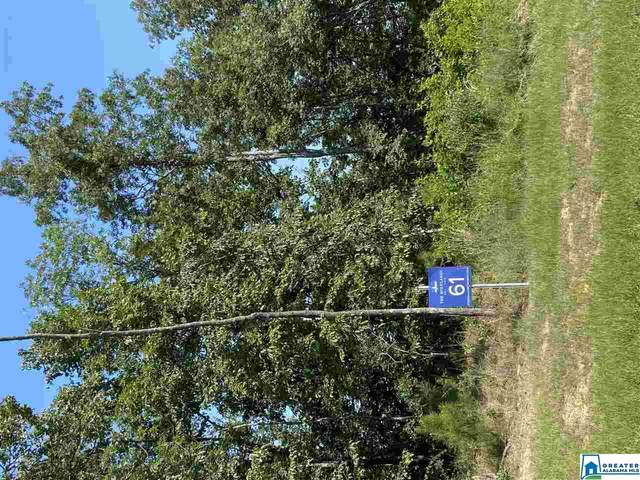 3095 Oakridge Way #61, Chelsea, AL 35043 (MLS #891625) :: Sargent McDonald Team