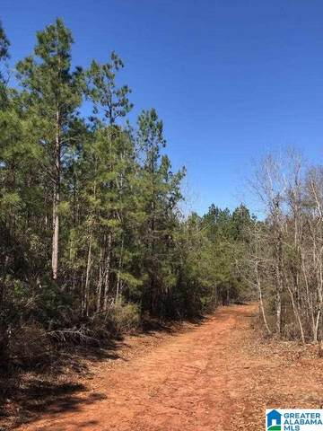 Co Rd 39 Summerfield Nor, Selma, AL 36701 (MLS #893372) :: Josh Vernon Group