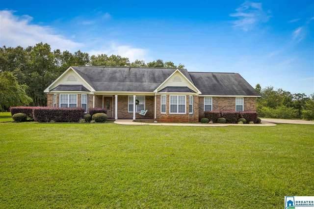 579 Lay Lake Ln, Sylacauga, AL 35151 (MLS #894446) :: Bailey Real Estate Group