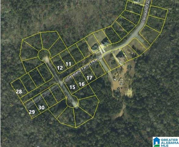 LOT #17 Cleveland Farms Pkwy #17, Odenville, AL 35120 (MLS #894777) :: Lux Home Group