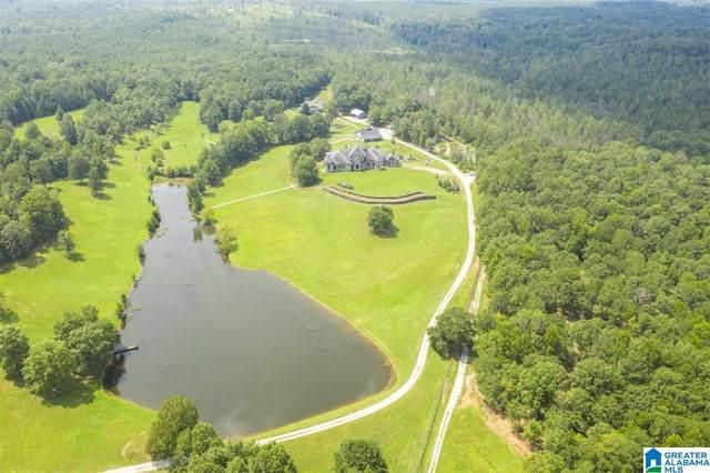 584 Meadow Lake Farms, Calera, AL 35040 (MLS #895121) :: Josh Vernon Group