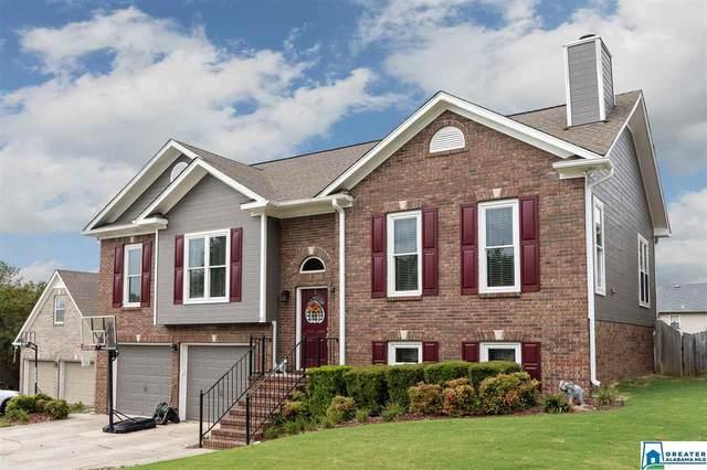 1350 Deer Trail Rd, Hoover, AL 35226 (MLS #895801) :: Bailey Real Estate Group