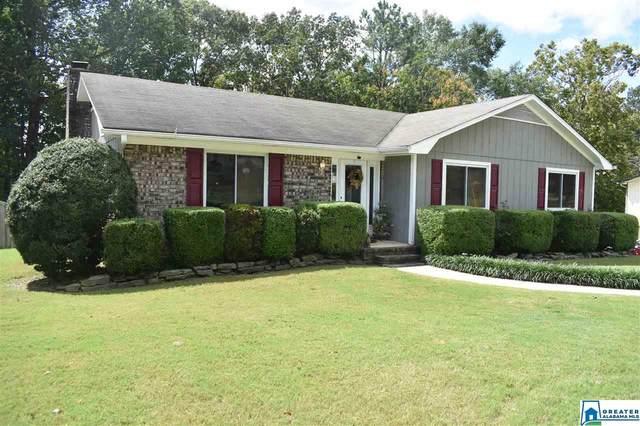 508 Wilderness Rd, Pelham, AL 35124 (MLS #895956) :: Bailey Real Estate Group