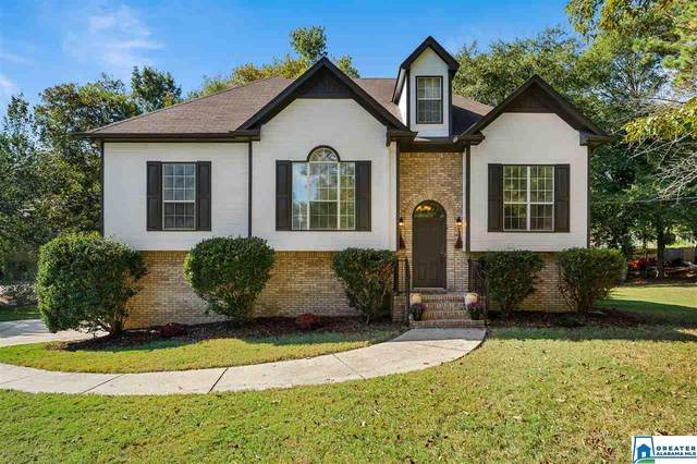 129 Shelby Forest Rd, Chelsea, AL 35043 (MLS #895964) :: Bentley Drozdowicz Group