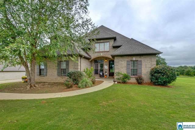 68 Co Rd 1079, Clanton, AL 35045 (MLS #896585) :: Bailey Real Estate Group