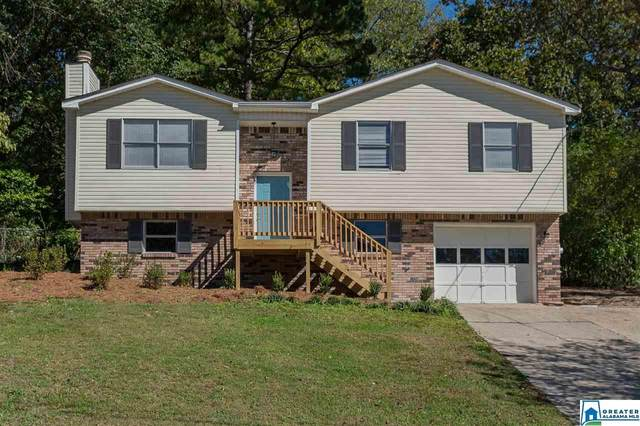 5951 Willow Ridge Rd, Pinson, AL 35126 (MLS #896780) :: Josh Vernon Group