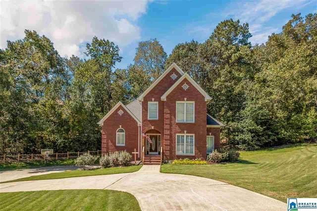 102 Chestnut Oak Ln, Trussville, AL 35173 (MLS #897125) :: Bailey Real Estate Group