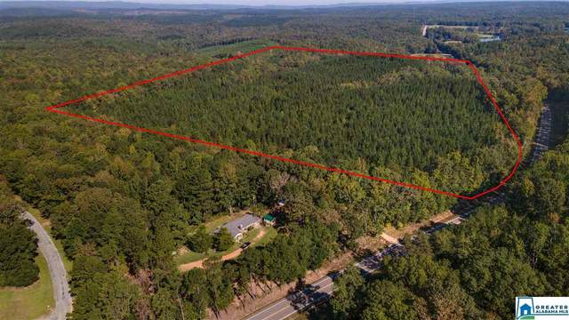 0000 Hwy 231 #1, Rockford, AL 35136 (MLS #897280) :: Josh Vernon Group