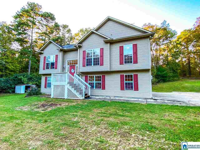 279 Lake View Cir, Riverside, AL 35135 (MLS #898120) :: Sargent McDonald Team