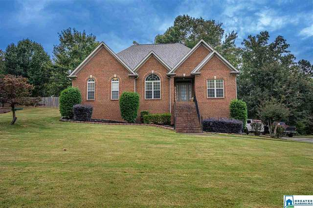 532 Fern Creek Dr, Springville, AL 35146 (MLS #898132) :: Bailey Real Estate Group