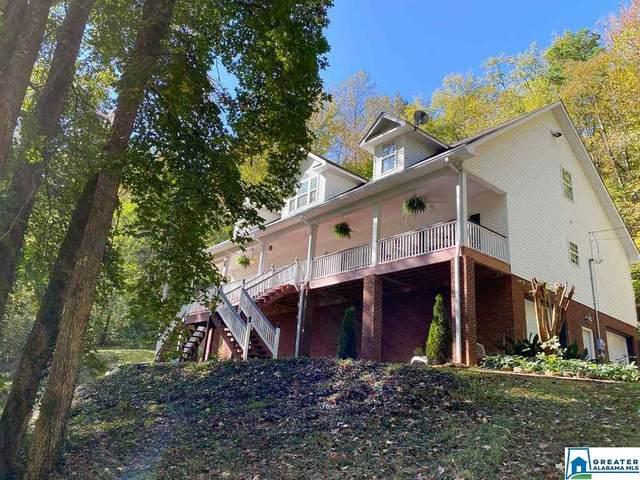445 Heritage Valley Dr, Springville, AL 35146 (MLS #899383) :: Josh Vernon Group