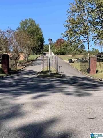 Lot 12 Oak Hill Drive #12, Dora, AL 35062 (MLS #900452) :: Howard Whatley